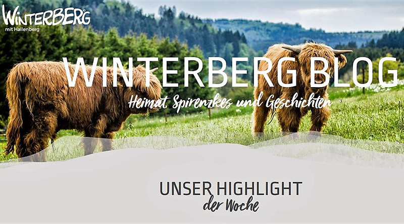 16.04.-Winterberg-800